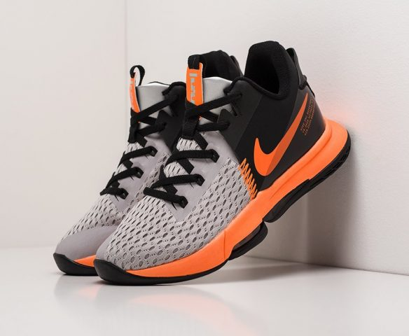 Nike Lebron Witness IV grey