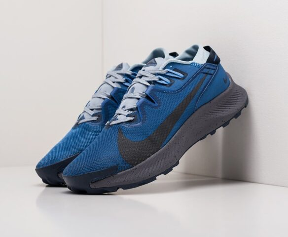 Nike Pegasus Trail 2 серые. Вид 1