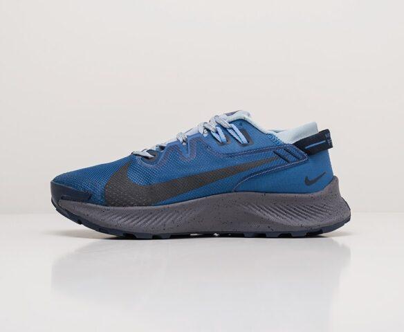 Nike Pegasus Trail 2 серые. Вид 2